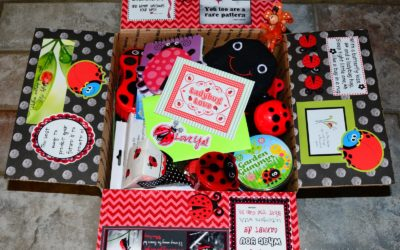 Ladybug Motivational Box Kit